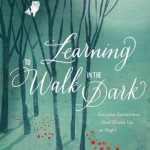 Book cover for Learning to Walk in the Dark
