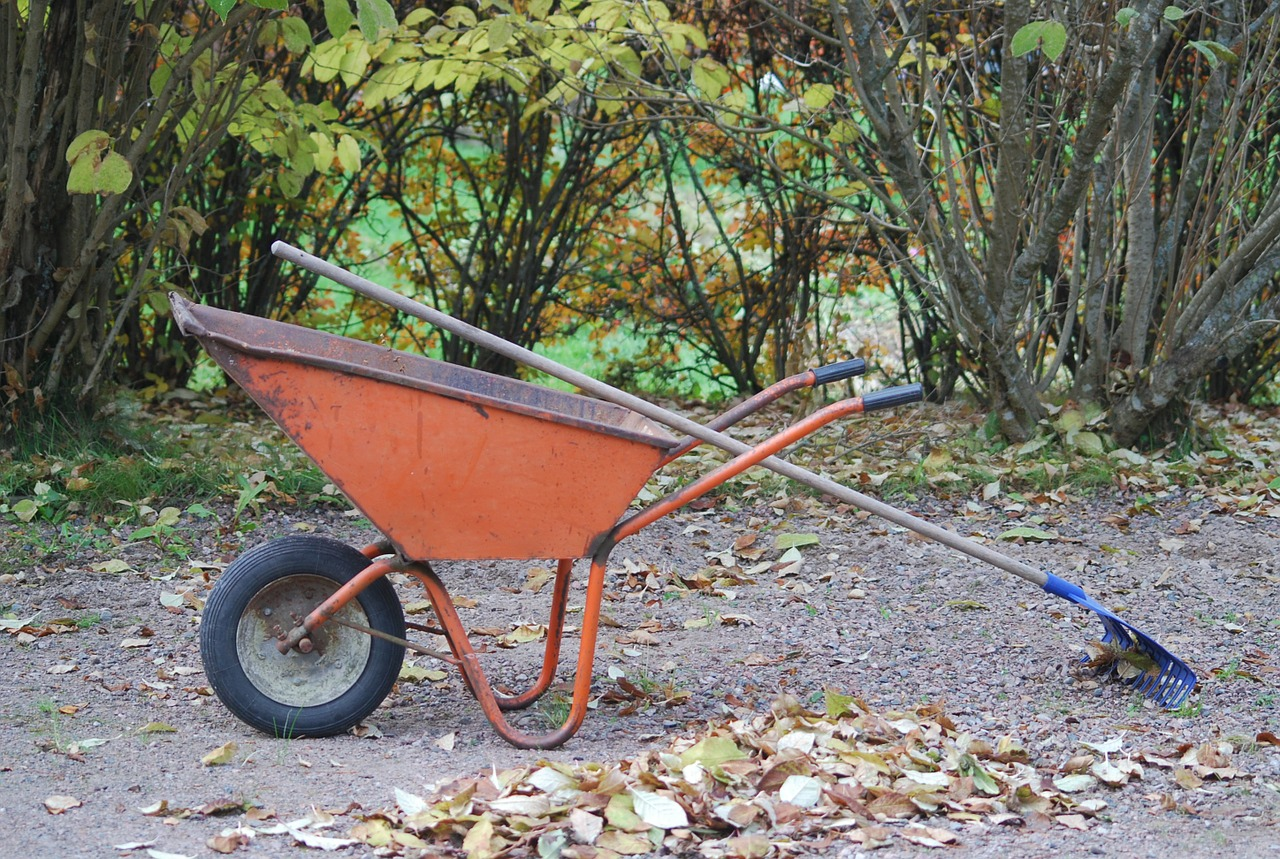Picture of a wheelbarrow